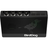 BirdDog 4K Quad NDI Encoder/Decoder