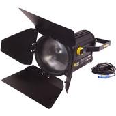 Fluotec VegaLux 300 Tunable Studio LED Fresnel (25cm)