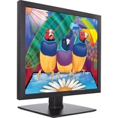 """ViewSonic VA951S 19"""" 5:4 IPS Monitor"""