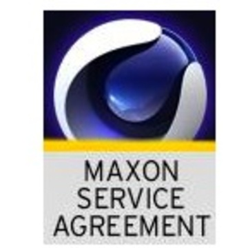 MAXON Service Agreement - Visualize - 12 Months (Download)