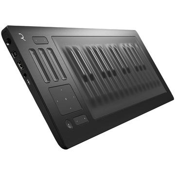 ROLI Seaboard RISE 25 - Keyboard Controller/Open-Ended Interactive Surface ( GEN2 )