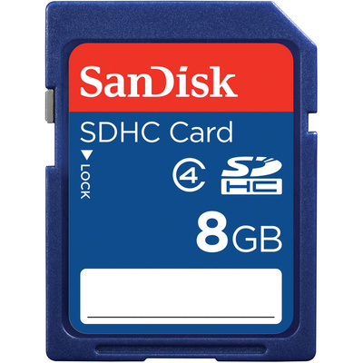 SanDisk 8GB SDHC Memory Card (Class 4)