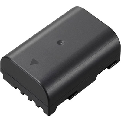 Panasonic DMW-BLF19 Rechargeable Lithium-ion Battery Pack