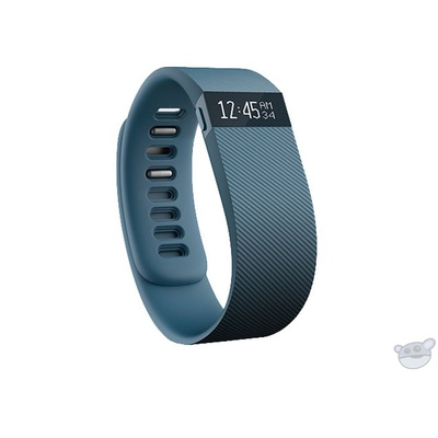 Fitbit Charge Activity + Sleep Wristband (Small, Slate)