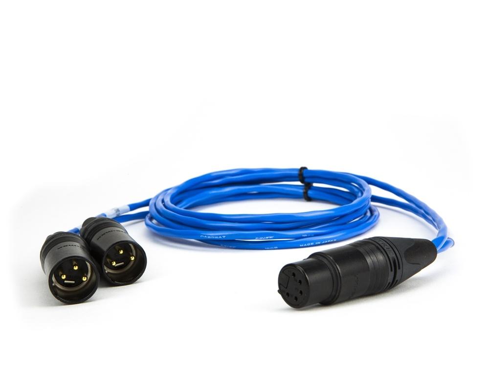 Laird Digital Cinema 5-Pin Female XLR to Dual 3-Pin XLR Male Balanced Line Breakout Cable (Blue)