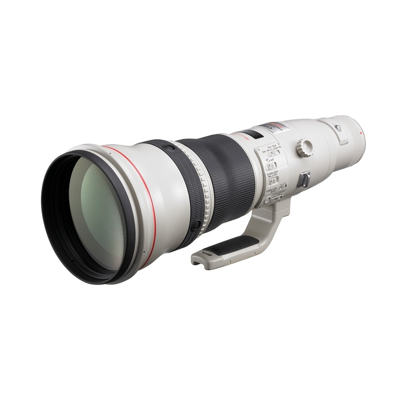 Canon EF 800mm f5.6L USM IS Telephoto Lens