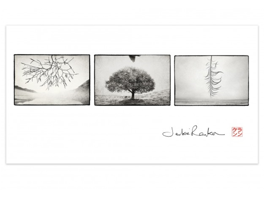 Print Other Realities Collection III by Jackie Ranken