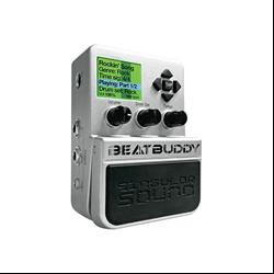 Singular Sound Beat Buddy Pedals