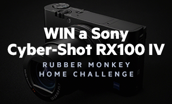 Rubber Monkey Home Challenge