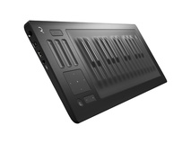 ROLI Seaboard RISE 25 - Keyboard Controller/Open-Ended Interactive Surface